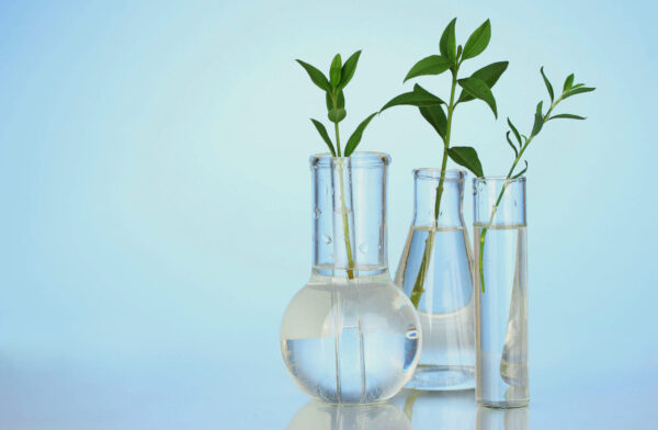 Reducing Oil Dependence Creating Jobs with Sustainable Polyols